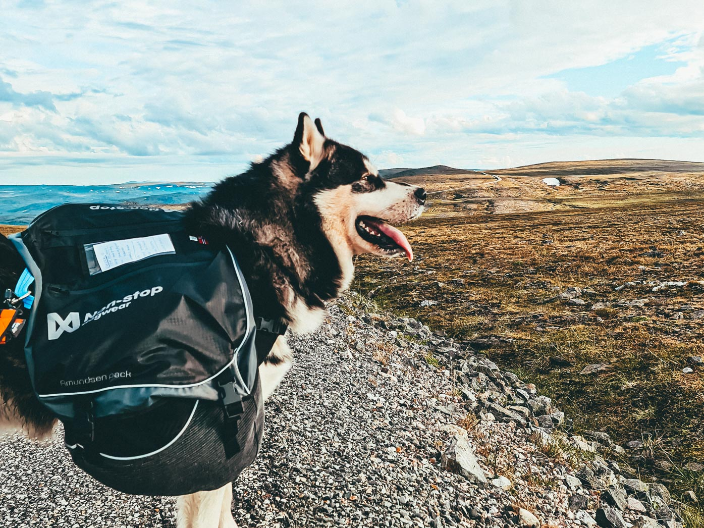 Nanook backpack norge på langs