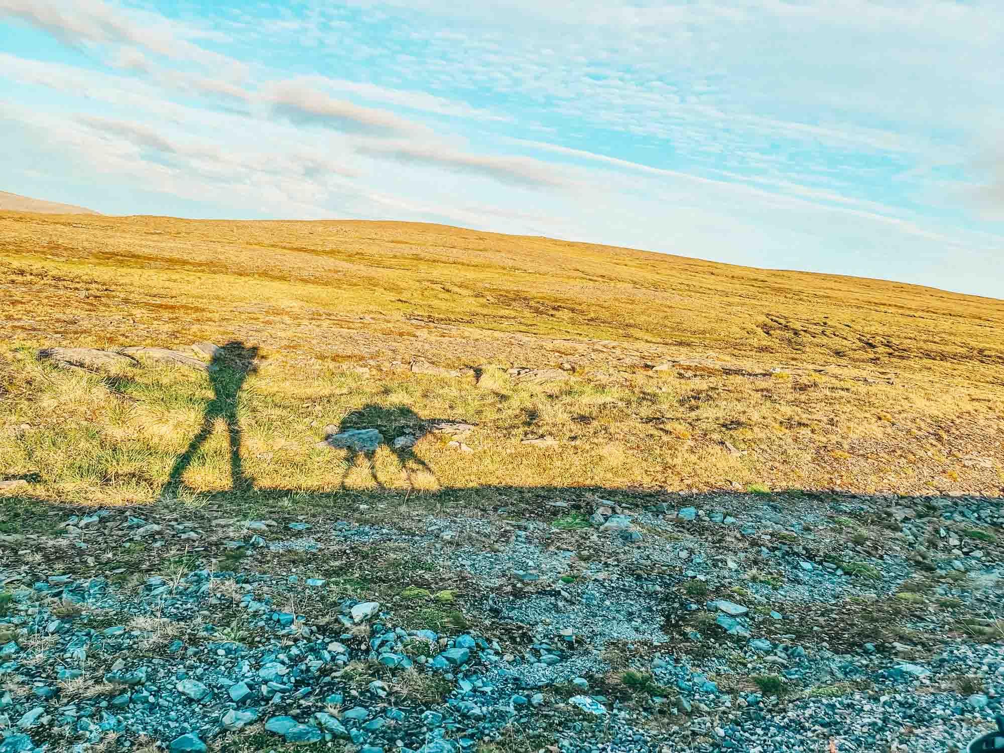 Stine og malamutene Norge på langs