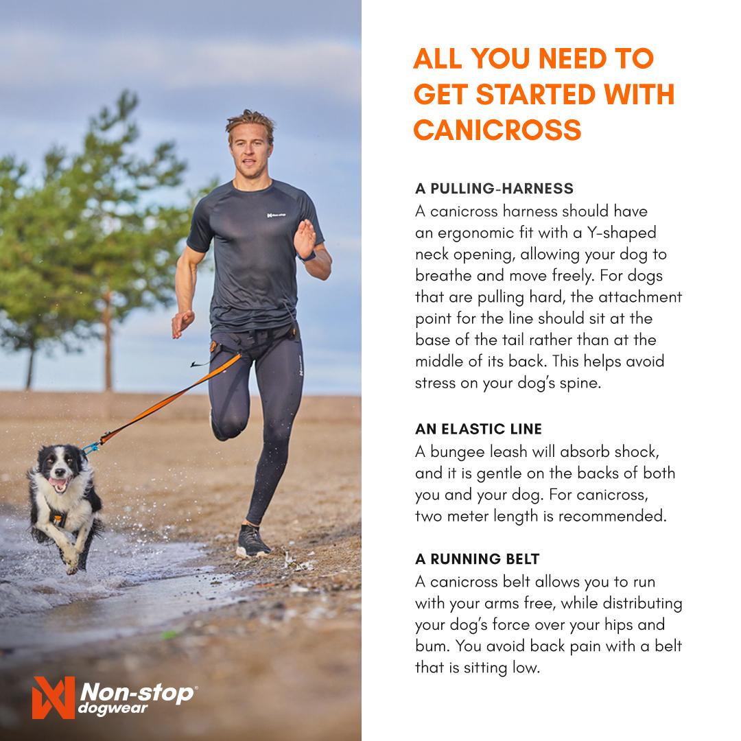 Canicross Gear Shareable