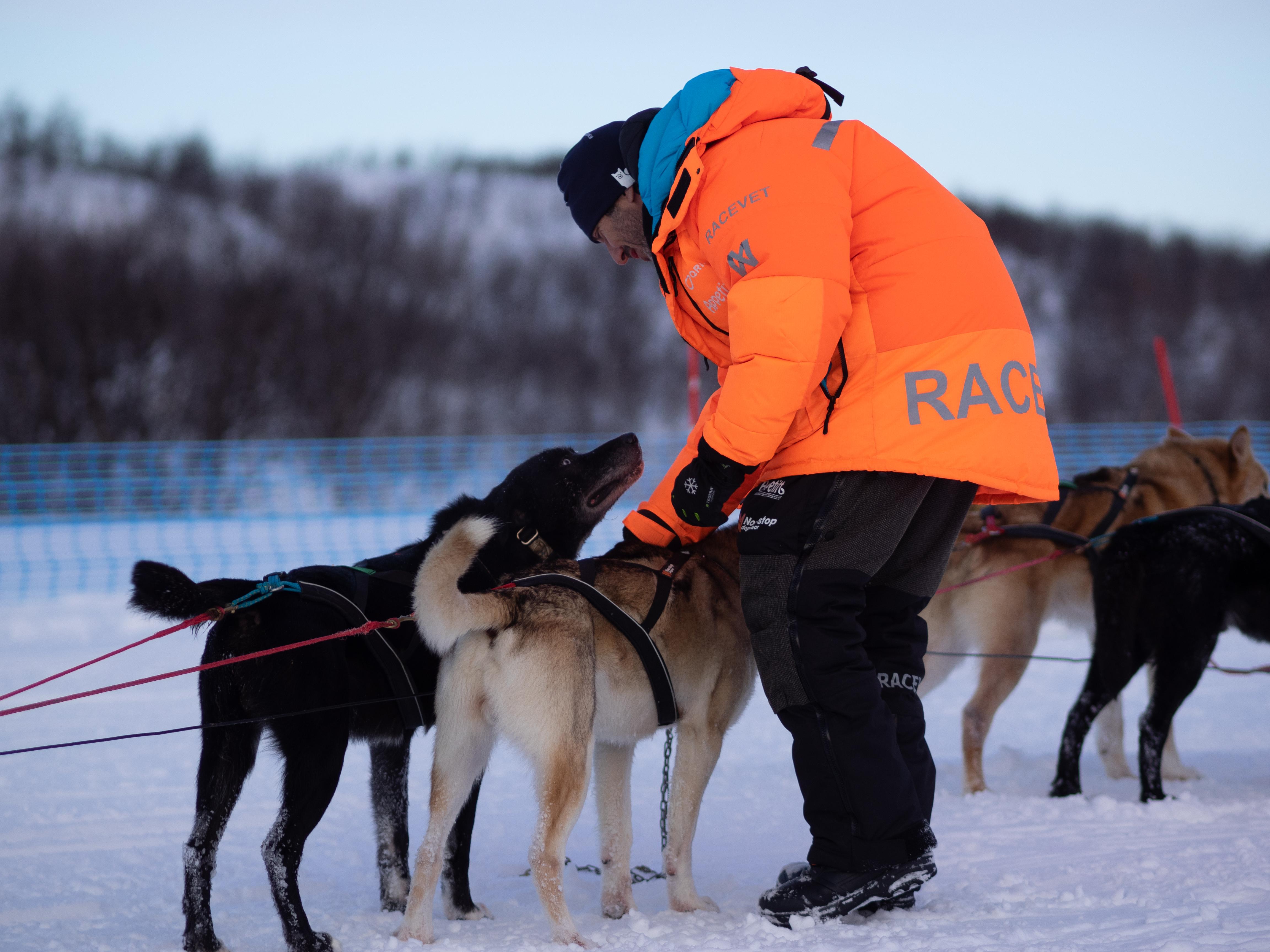 Finnmarksløpet 2020 race vet