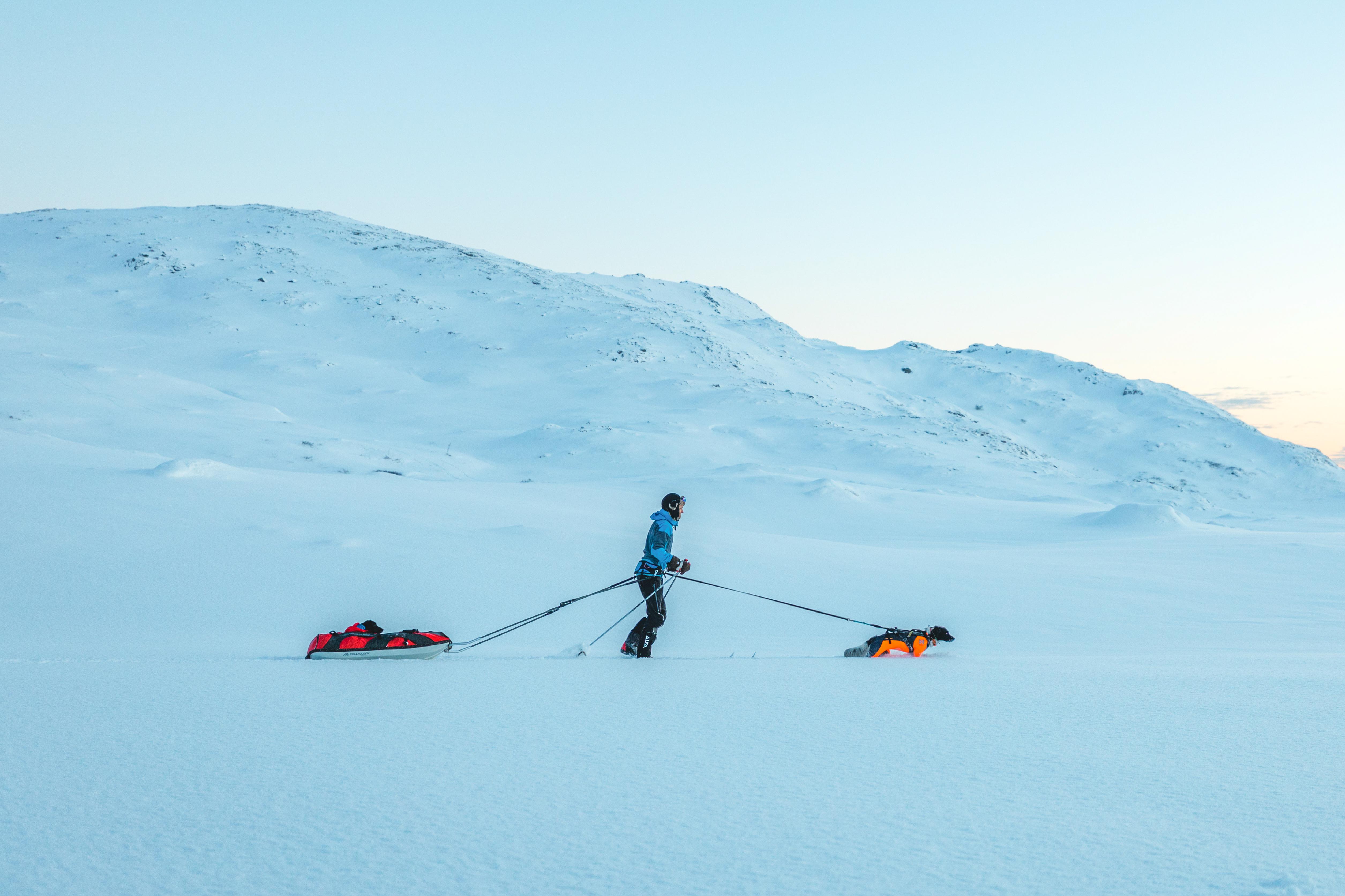 Polar, Ferd & Protector Snow 13 3