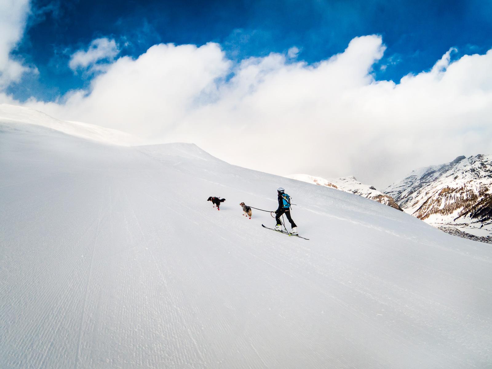 Skitouring Cms 6
